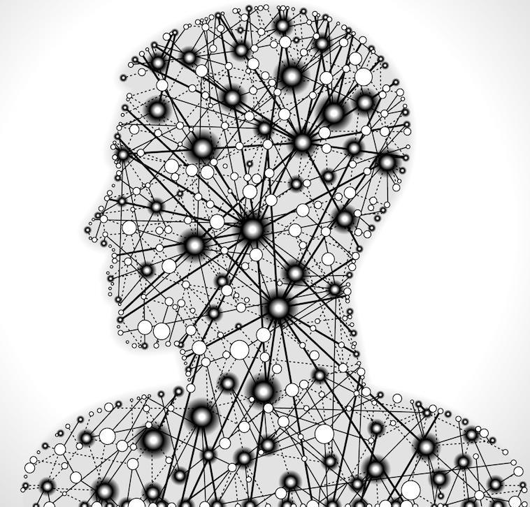 Bioengineers introduce Bi-Fi -- The biological Internet